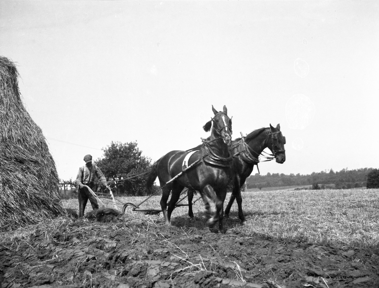 photo of Mason Dillon behind the plow